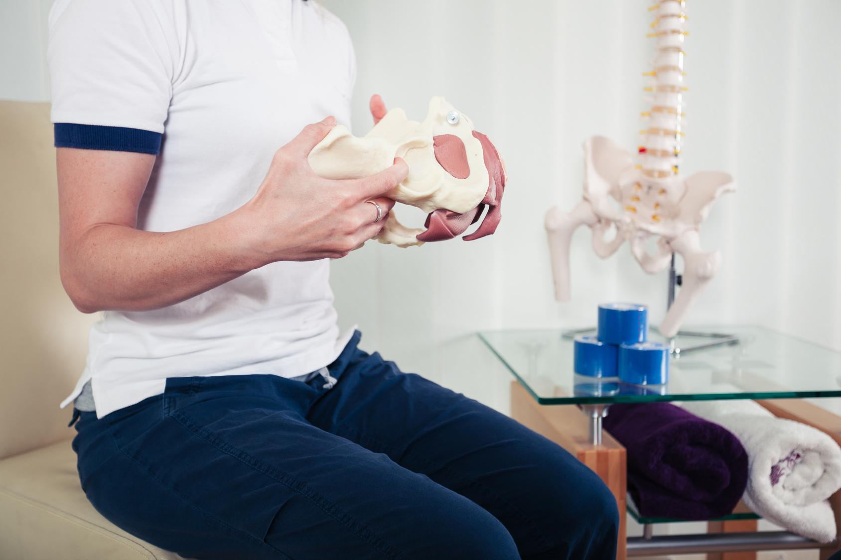 A physiotherapist is holding a model of a human pelvis